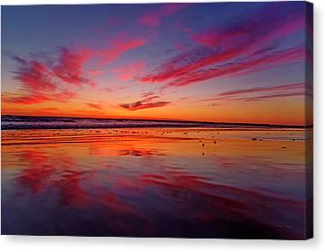 Sandpiper Canvas Print - Last Light Topsail Beach by Betsy Knapp