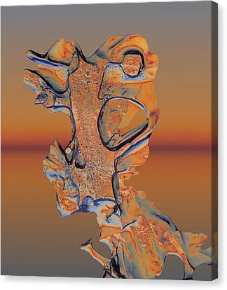 Canvas Print featuring the photograph Last Look At Sunset by Sami Tiainen