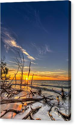 Last Stand Canvas Print by Marvin Spates