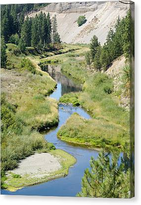 Canvas Print featuring the photograph Latah Creek by Ben Upham III