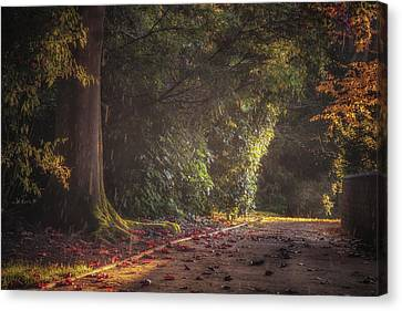 Late Afternoon Autumn Shower Canvas Print