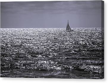Late Afternoon Sailing Canvas Print