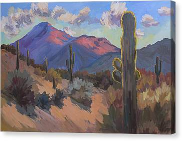 Late Afternoon Tucson 2 Canvas Print by Diane McClary