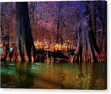 Late Evening In Reelfoot Canvas Print by Julie Dant
