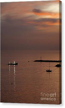 Canvas Print featuring the photograph Late Evening by Viktor Savchenko