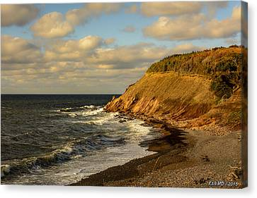 Late In The Day In Cheticamp Canvas Print