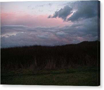 Canvas Print featuring the photograph Late Light by Laurie Stewart