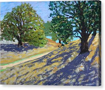 Canvas Print featuring the painting Late Light's Shadows by Gary Coleman