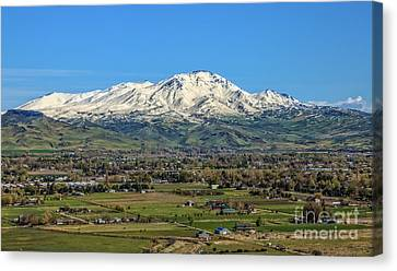 Canvas Print featuring the photograph Late Spring On Squaw Butte by Robert Bales