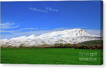 Late Spring View Canvas Print by Robert Bales
