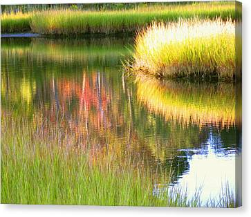 Stillness Of Late Summer Marsh  Canvas Print