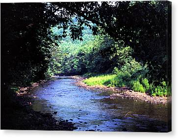 Late Summer On Williams River Canvas Print by Thomas R Fletcher