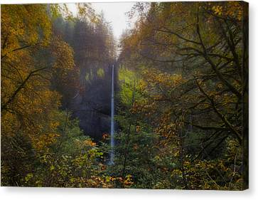 Latourell Falls In Autumn Canvas Print by David Gn