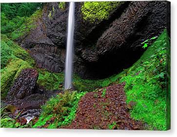 Latourell Falls Oregon Canvas Print by Jonathan Davison