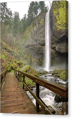Latourell Falls Waterfall And Bridge Columbia River Gorge Oregon Canvas Print by Dustin K Ryan