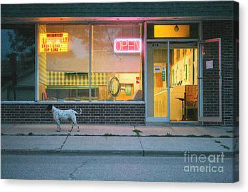 Laundromat Open Canvas Print