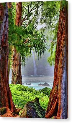 Canvas Print featuring the photograph Laupahoehoe Hawaii by DJ Florek