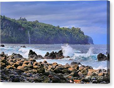 Canvas Print featuring the photograph Laupahoehoe Point by DJ Florek