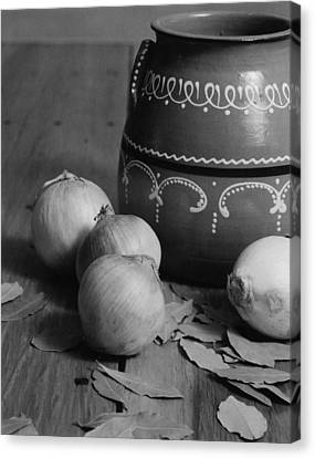 Laurel And Onions Canvas Print by Henry Krauzyk