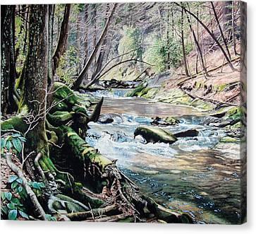 Laurel Creek  Canvas Print