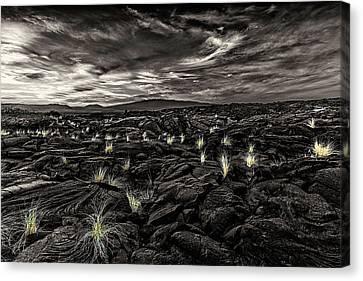 Lava Flow Canvas Print by Thomas Ashcraft