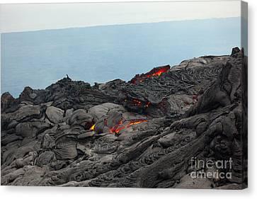 Lava Tube Canvas Print by Craig Ellenwood