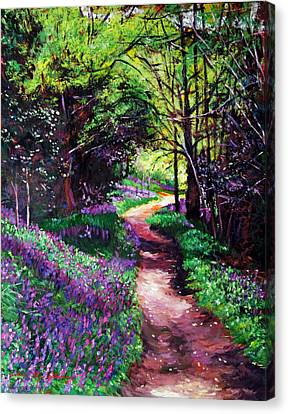 Lavendar Lane Canvas Print by David Lloyd Glover