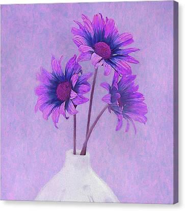 Lavender Chrysanthemum Still Life Canvas Print