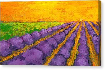 Lavender Field A Modern Impressionistic Artwork In Palette Knife Canvas Print by Patricia Awapara