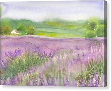Lavender Field In Italy Canvas Print