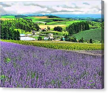 Canvas Print featuring the photograph Lavender Fields by Kathy Tarochione
