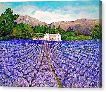 Canvas Print - Lavender Fields by Michael Durst
