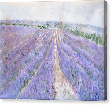 Lavender Fields Provence-france Canvas Print