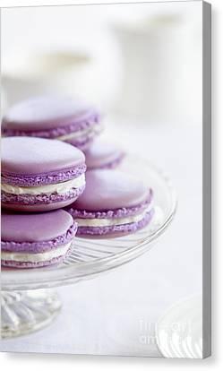 Lavender Macarons Canvas Print