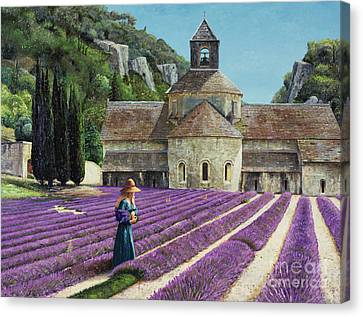 Lavender Picker - Abbaye Senanque - Provence Canvas Print by Trevor Neal