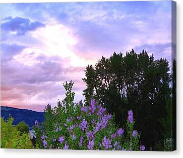 Colorful Sky Canvas Print - Lavender Sky Watercolor by Will Borden