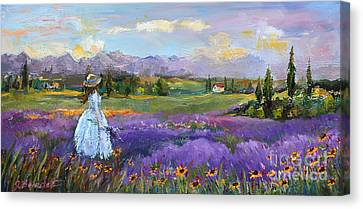 Lavender Splendor  Canvas Print