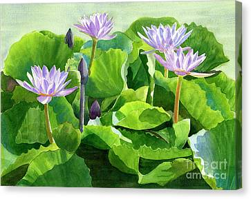 Lavender Water Lilies With Background Canvas Print