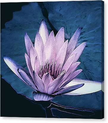 Canvas Print featuring the photograph Lavender Water Lily  by Julie Palencia