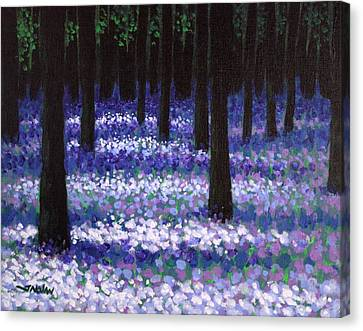 Lavender Woodland Canvas Print by John  Nolan
