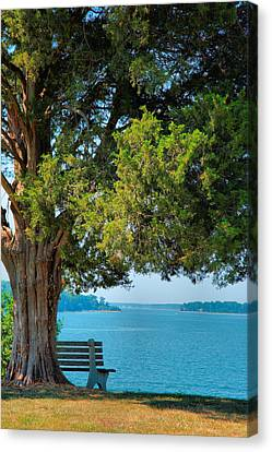 Lawn With A View Canvas Print by Steven Ainsworth