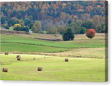 Layers Of Fields Canvas Print by Jan Amiss Photography