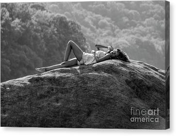 Laying On The Rock Canvas Print by Dan Friend