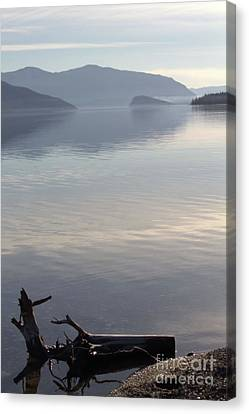 Canvas Print featuring the photograph Laying Still by Victor K