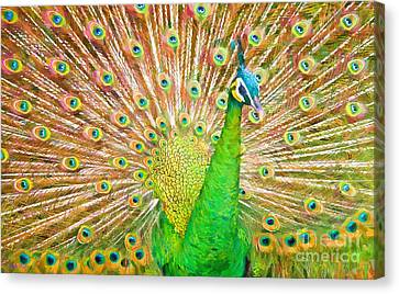 Aviary Canvas Print - Le Plumage by Judy Kay