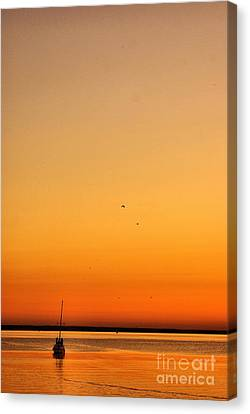 Canvas Print featuring the photograph Le Voyage 02 by Aimelle