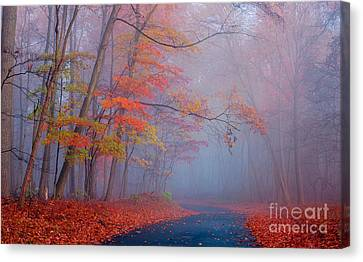 Journey Canvas Print by Rima Biswas