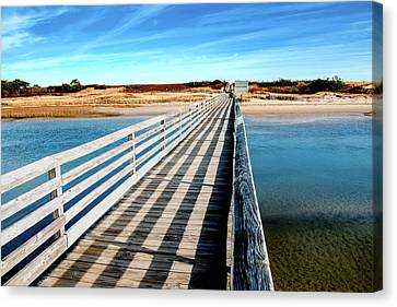 Leading Lines Canvas Print by Greg Fortier