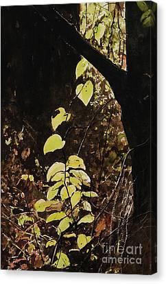Leaf Glow Canvas Print by Carla Dabney