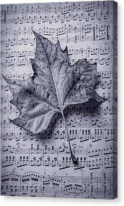Leaf On Sheet Music In Black And White Canvas Print